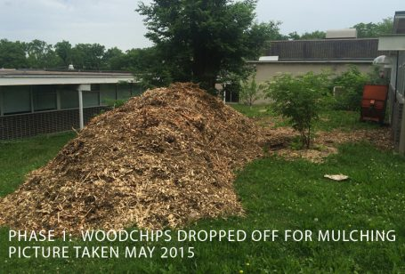 food forest wood chip pile