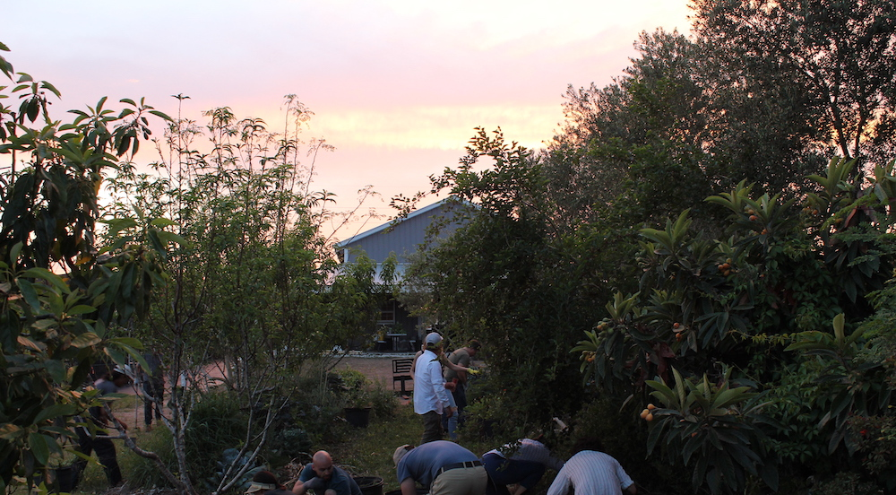 permaculture near me